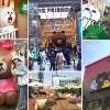 【南韓旅遊】明洞 ♥ LINE Friends Store開新旗艦店了 ! 還有CHOCO熊大妹妹的店, 太可愛了❛◡❛✿