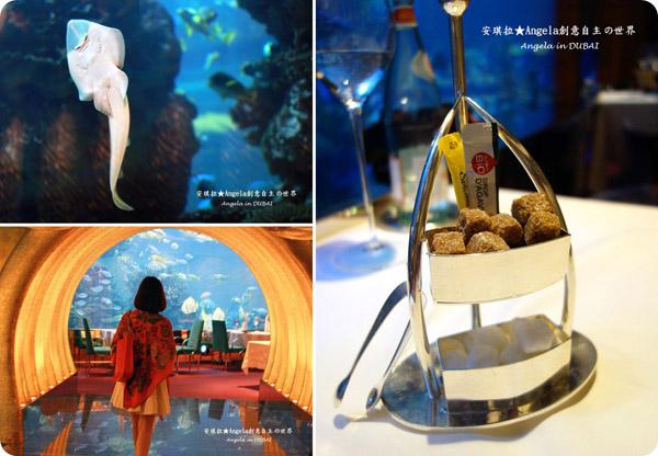 【杜拜旅遊】海底餐廳 ღ 浪漫悠遊享美食 ღ 七星級帆船飯店 Burj Al Arab