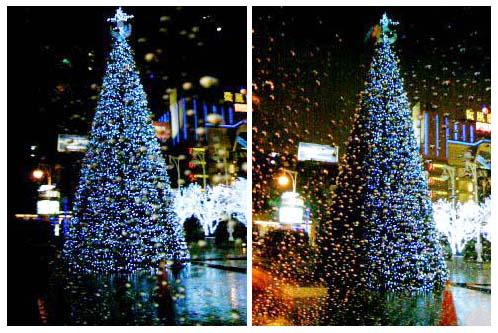 2008 雪中聖誕樹 at 微風