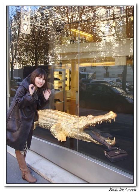 就算被鱷魚吃下肚。也要帶走的包包